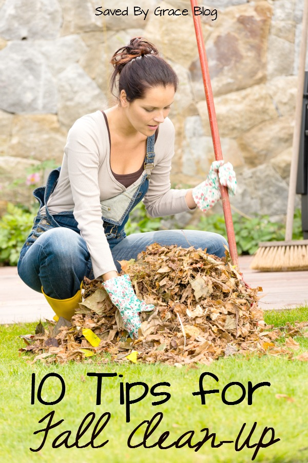 10 Tips for Fall Clean Up