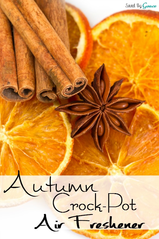 Autumn Crock Pot Air Freshener