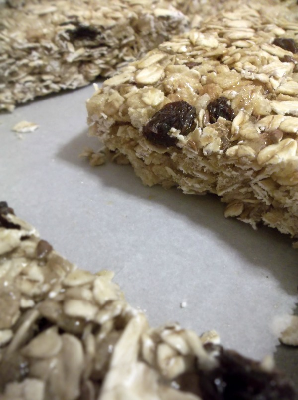 flax seed granola bar recipe