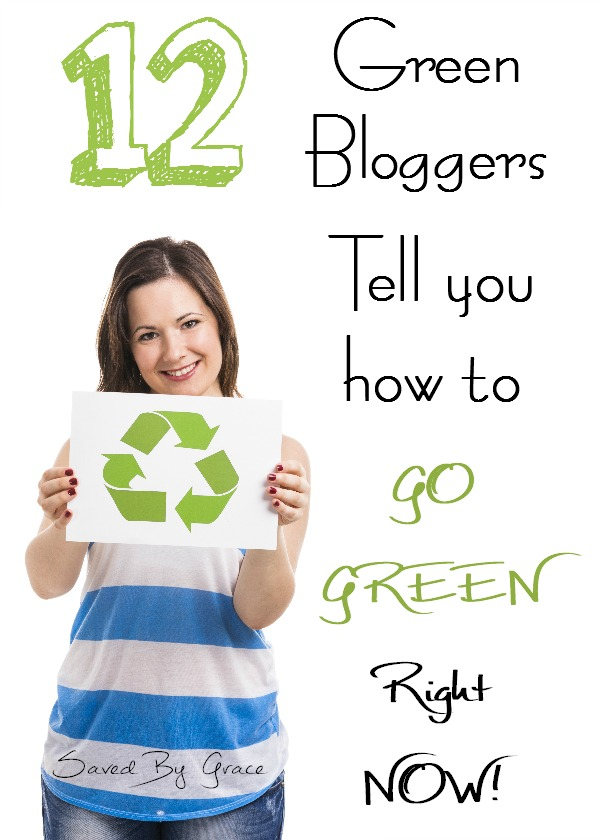 12 Green Bloggers tell you how to go green right now