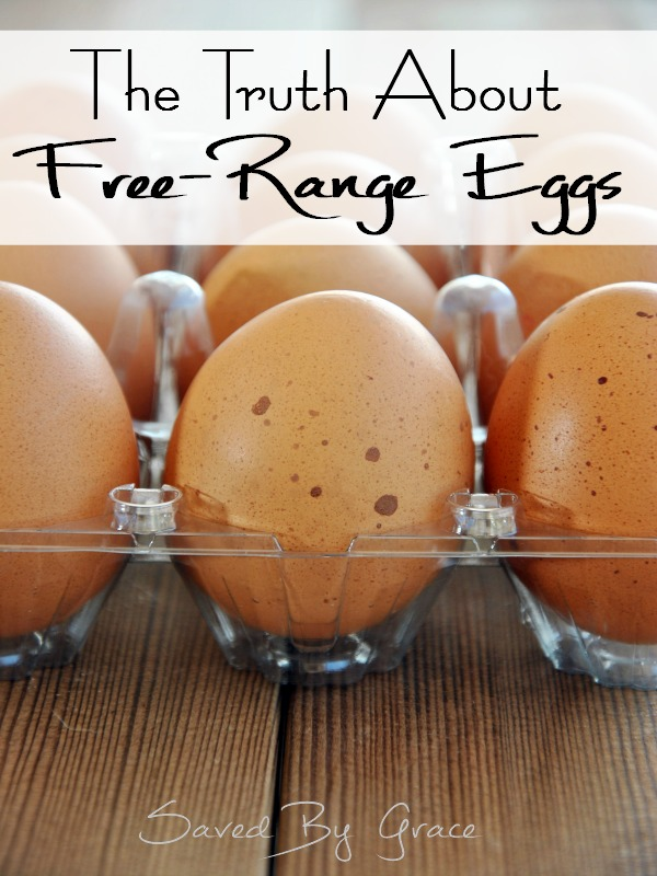 The Truth about Free-Range Eggs including facts on all egg carton labeling for consumers, misleading egg labels and where to get free-range eggs.