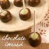 Chocolate covered green apple pops