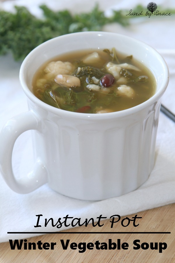 instant-pot-recipe-soup