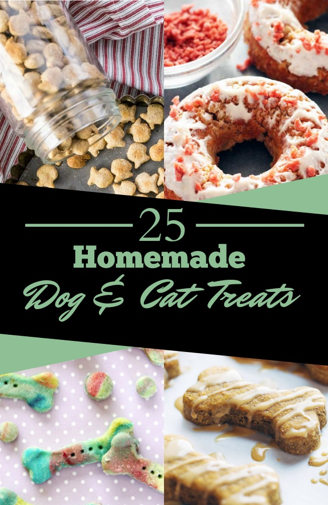 Homemade Grain Free Cat Treat Recipes